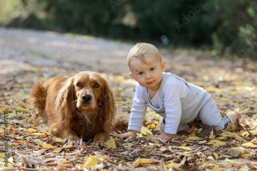 Láminas  Complicité entre le petit bébé garçon et son chien.