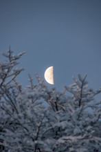 Moon Half Moon Winter Snow At ...