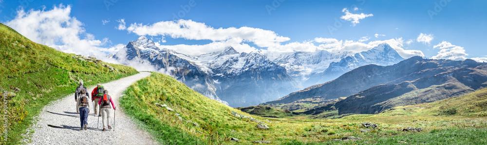 Fototapety, obrazy: Gruppe beim Wandern in den Schweizer Alpen als Panorama Hintergrund