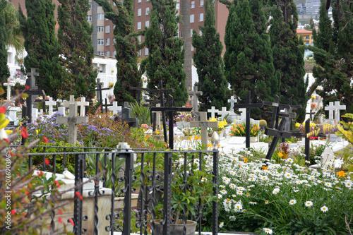 Foto op Plexiglas Begraafplaats cruces en un cementerio