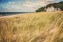 Grasses On Sand Dunes At The B...