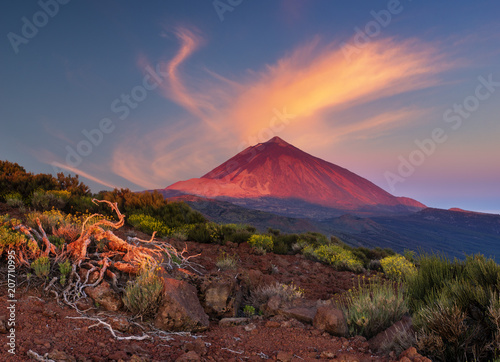 Fotografie, Obraz Teide volcano in Tenerife in the light of the rising sun.