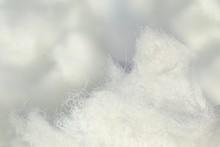 Cellulose Fiber
