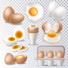 Egg Vector Healthy Food Eggwhi...