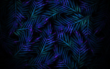Tropical Leaves, Neon Light