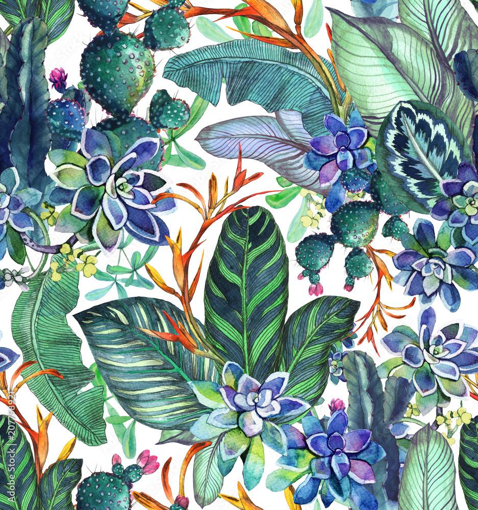 Tropikalny wzór z sukulentów, tropikalny liści. Tło botaniczne