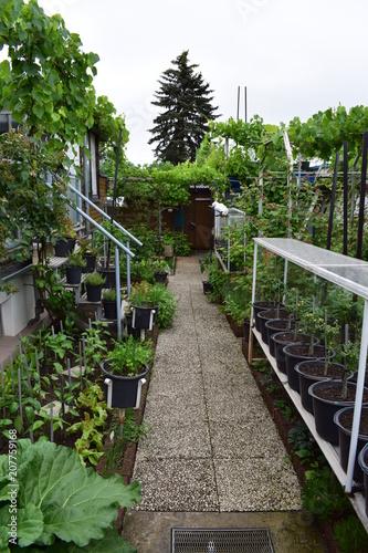 In de dag Spoorlijn gemsichter Garten