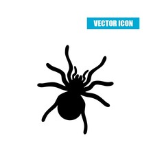 Spider Silhouette Icon Isolate...