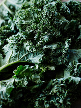 Kale, Close-up, Full Frame