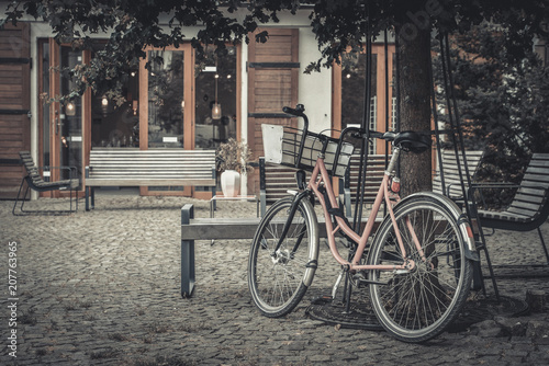 Poster Fiets Vintage pink bicycle under the tree