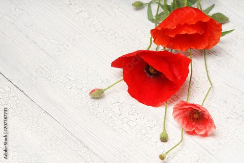 Foto op Canvas Poppy Red poppy flowers on white rustic wood.