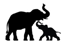 Silhouette Of Elephant With Ba...