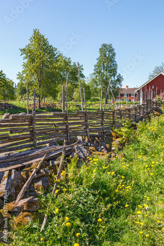 Tuinposter Wijngaard Rural summer idyll with a wooden fence on a flower meadow
