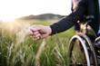 Leinwandbild Motiv A hand of a senior man in wheelchair holding grass flower in nature. Close up.