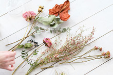 Dried Flowers And Twigs On Whi...