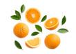 Leinwandbild Motiv Group of slices, whole of fresh orange fruits and leaves isolated on white background. Top view