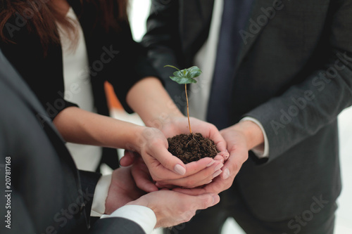 Fotografia  Male and female business partners nurturing a new plant