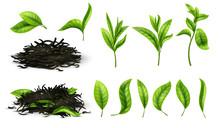 Close Up Realistic Tea Dried H...