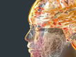 canvas print picture - 3d Illustration of a transparent human refractive skull with colorful polygon styled brain