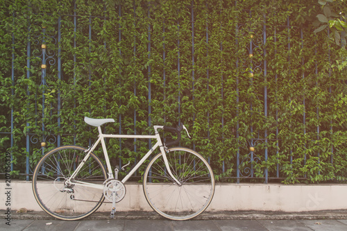 Deurstickers Fiets Vintage road bike on bush background, picture in vintage tone