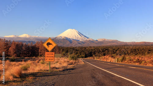Kiwi road sign and volcano Mt. Ngauruhoe at sunset, Tongariro National Park, New Zealand