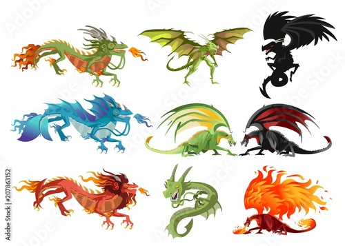 wild dragons collection Poster