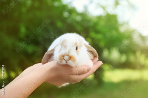 Keuken foto achterwand Kat Woman holding adorable bunny on blurred background
