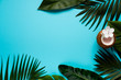 Leinwanddruck Bild - Trendy summer tropical leaves on blue background. Space for a text. Bright summer color. Minimal style.