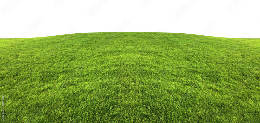 Fototapety, obrazy: Green grass texture background isolated on white background with clipping path.