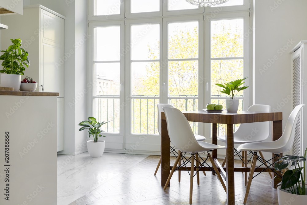Fototapety, obrazy: White chairs at wooden table with plant in bright dining room interior with window. Real photo