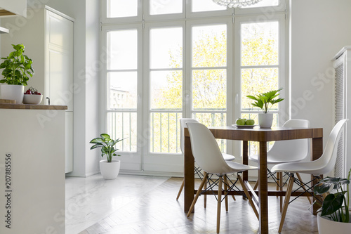 White chairs at wooden table with plant in bright dining room interior with window. Real photo
