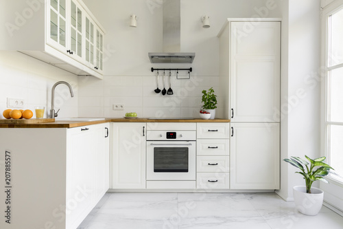Αφίσα  Silver cooker hood in minimal white kitchen interior with plant on wooden countertop