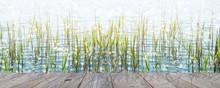 Holzsteg Am Ufer