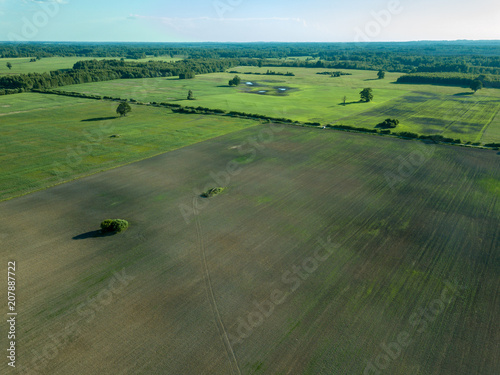 Fotobehang Khaki drone image. aerial view of empty cultivated fields with lonely tree in the middle
