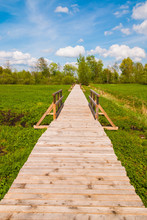 Boardwalk Nature Experience Tr...