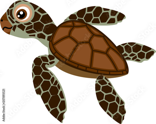 Fotografie, Obraz  Cute cartoon hatchling of sea turtle on white background