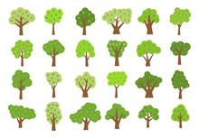 Set Of Twenty Four Green Trees...
