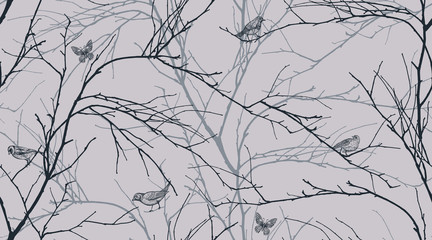 FototapetaSeamless pattern with forest birds and tree branches.