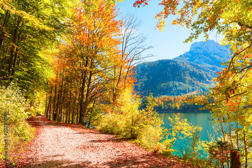 Foto op Canvas Herfst Autumn trees with colorful leaves on the shore of lake in Austrian Alps.