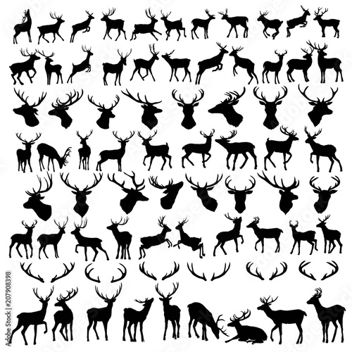 Fotografie, Obraz  vector large collection of deer silhouettes