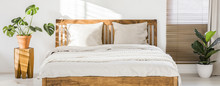 Close-up Of Double Wooden Bed With Bedding, Pillows And Blanket Against White Wall In A Bright Sunny Bedroom Interior. Two Green Plants Standing Beside. Panorama. Real Photo.