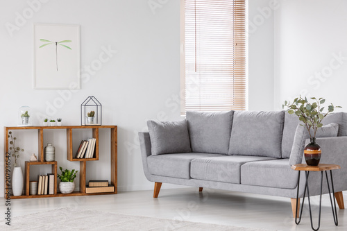 Plant on wooden table next to grey sofa in natural living room interior with poster. Real photo
