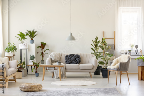 Real Photo Of A Botanic Living Room Interior Full Of Plants With A