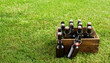 canvas print picture - Crate of craft beer on green grass with copy space