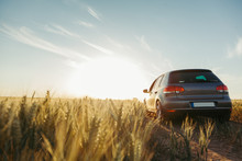 Car In The Field In Summer Sun...