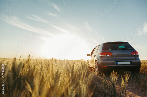 Photo Car in the field in summer sunset
