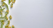 Linden Flowers On A Wooden White Background Top View, Floral Background With Copy Space