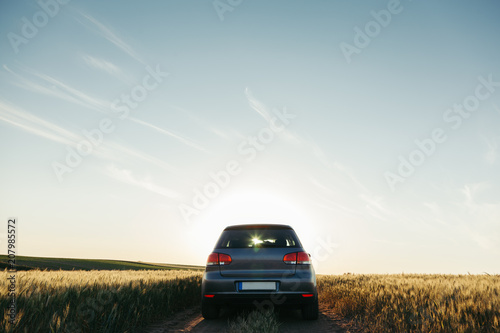 Car in the field in summer sunset Canvas Print