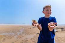 Boy Holding Starfish On His Hand At Seaside