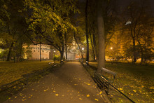 Autumn Night In A Park